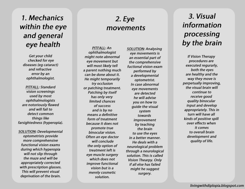 schematic visual system