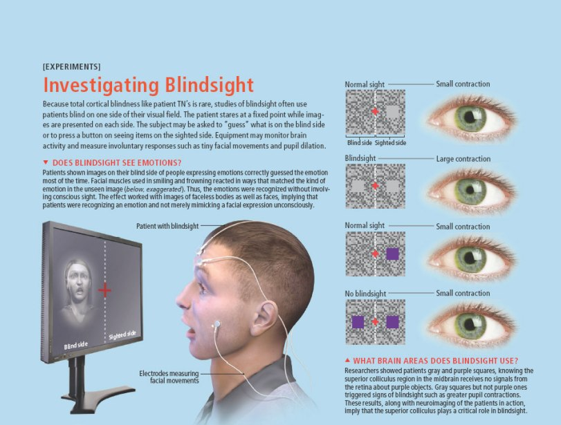 Blindsight and Emotions