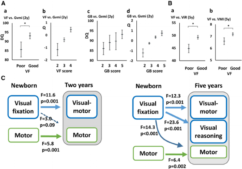 Figure-1-Relation-of-newborn-VF-and-GB-to-neurocognitive-outcomes-at-2-and-5-years-A