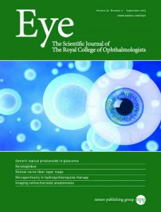 Eye Journal Cover