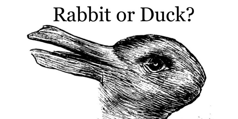 rabbit-or-duck