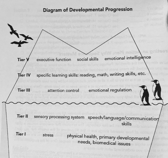 Developmental Tiers