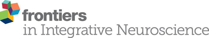 frontiers in integrative neuroscience logo.jpg