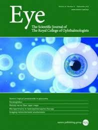 Journal Eye Cover